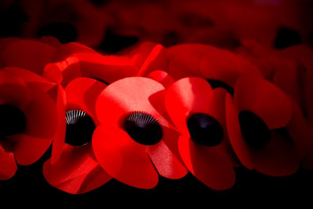 Ombudsman issues Armed Forces Covenant guidance to councils on Remembrance Day